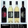 花鳥風月 【麻屋葡萄酒】