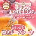 【澤井珈琲】コーヒー専門店の極上の手作りチーズケーキ(スイーツ/お菓子)