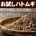 【お試し送料無料】国産はと麦茶【ハトムギ はとむぎ】