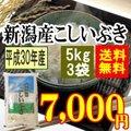 新潟産こしいぶき 15kg(5kgx3袋)(平成28年産)【送料無料】(一部地域を除く)