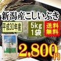 新潟産こしいぶき 5g(5kgx1袋)(平成28年産)【送料無料】(一部地域を除く)
