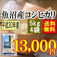 魚沼産コシヒカリ20kg