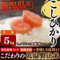 【送料無料】低温製法米 白米 新潟県産こしひかり 5kg [白米/お米/ご飯]【SB】