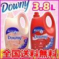 【送料無料】アジアンダウニーイノセンス・ヘロカパフュームパッション 3.8L【Downy】(ベトナムダウニー液体柔軟剤3800ml)【D】 ワケあり