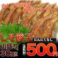 餃子/セット【限定価格】【女性に人気!】風味豊かしそ餃子30個入り【お試し】