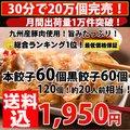 【メガ盛り】黒餃子60個本餃子60個!合計120個!約20人前!送料込[複数購入はおまけ付]