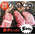 国産和牛ハラミ(サガリ)【500g】焼肉(焼き肉)バーベキュー(BBQ)に!■はらみ