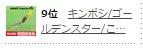 9位キンボシ/ゴールデンスター/こ…