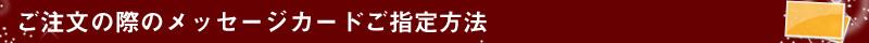 Newbag Wakamatsu|ラッピングについて