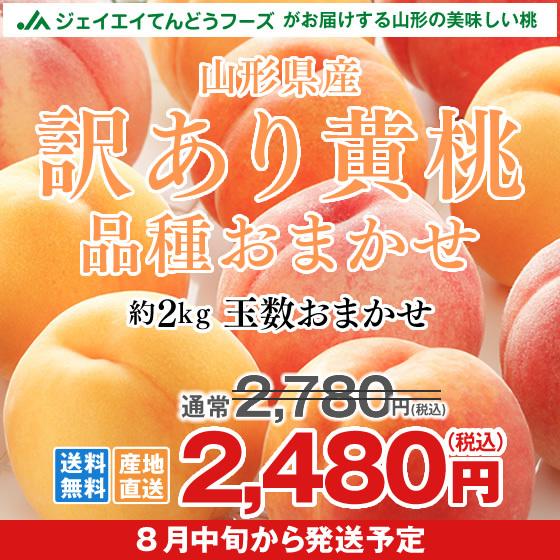 【訳あり】 品種おまかせ 黄桃 山形県産 約2kg (玉数おまかせ) もも 桃  8月中旬~出荷予定 f16
