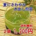 水出し煎茶ティーバッグ2袋セット【送料無料】【メール便発送】