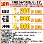 北海道産えのき 中サイズ 1袋(株100g)