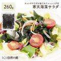 【送料無料】 ボリューム満点♪湯戻し簡単メガサイズ 寒天海藻サラダ メガ盛260g