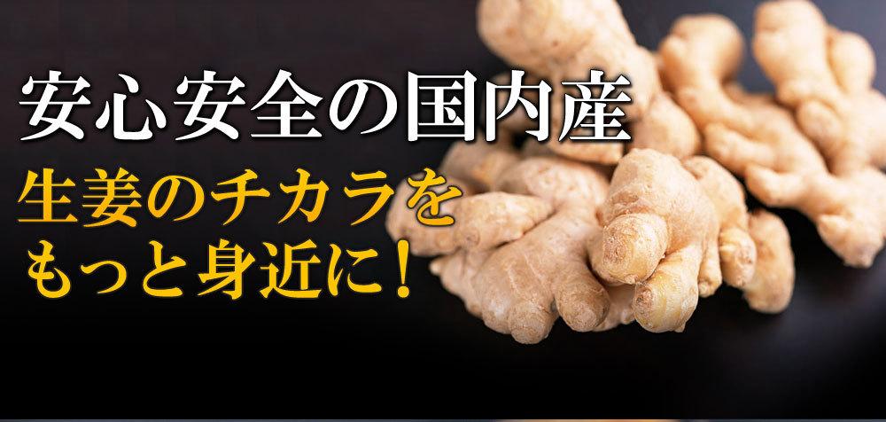 国産生姜の粉末