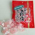 【残暑対策塩飴】クエン酸たっぷり!体にやさしい塩分補給 うめの塩キャンディ90g