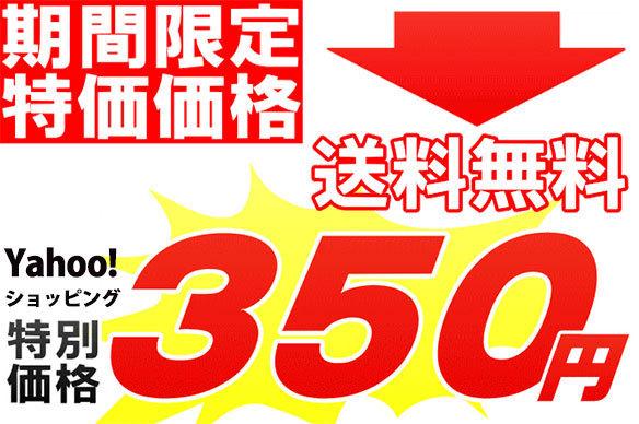 送料無料 特別価格 350円