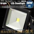 LED投光器 30W DC 12V~24V 対応 300W相当 白昼色 防塵防水仕様【翌日配達】【配送種別:B】