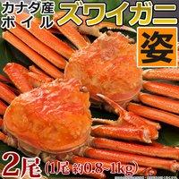 かに ズワイガニ 送料無料 カナダ産 ボイル ズワイ蟹 800g ~ 1kg × 2尾 姿 2kg ずわいがに カニ 2キロ 特大 北海道 鍋 急速冷凍 蟹身
