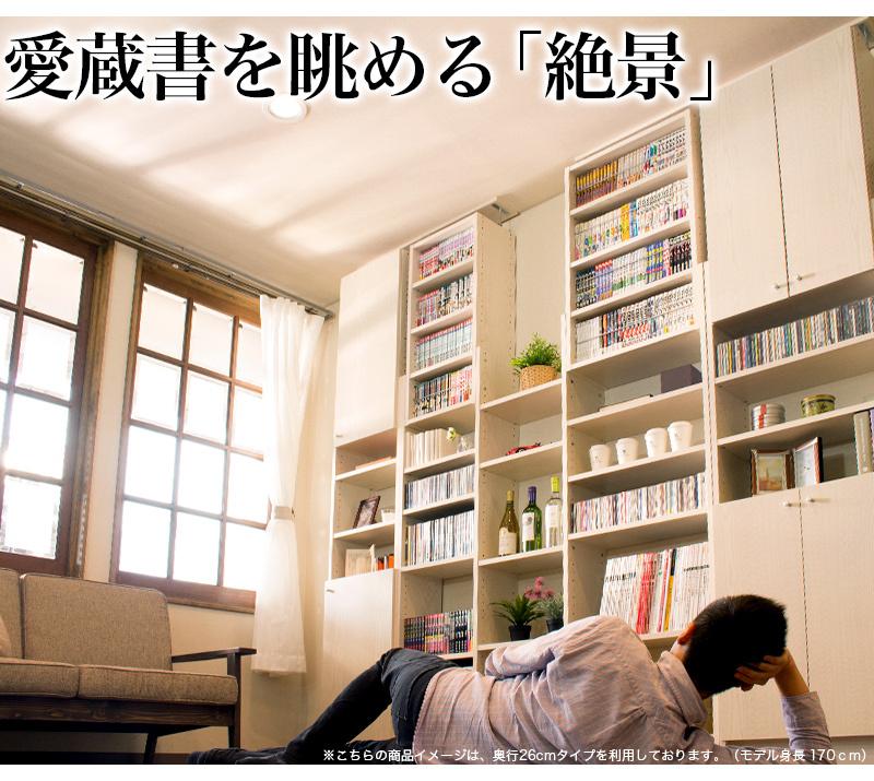 書斎用として設置するも良し、部屋をパーソナル図書館とするも良し、愛蔵書の整理に最適。