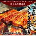 《送料無料》鹿児島産 炭火焼き うなぎ3人前(1人前:約80g)※冷凍 ☆