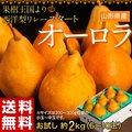 《送料無料》『西洋梨 オーロラ』 山形県産 6~10玉 約2kg ○