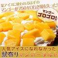 ≪送料無料≫人気アイスになれなかったマンゴーたっぷり使用!『訳ありマンゴータルト』1ホール(直径約15cm) ※冷凍 ☆