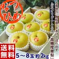 《送料無料》鳥取県産 新品種梨「なつひめ」 約2kg(5~8玉) ○