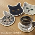 REALITY ANIMAL MASK COASTER CAT【コースター 猫 リアル】