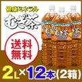 【送料無料】健康ミネラル むぎ茶 2L×2箱(12本)《伊藤園》