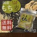 【メール便・送料無料】国産 もち麦 250g  国産 水溶性 食物繊維 大麦 βグルカン ダイエット もちむぎ 《ディジャパン》