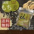 【送料無料】国産 もち麦 250g×5個  国産 水溶性 食物繊維 大麦 βグルカン ダイエット もちむぎ 《ディジャパン》