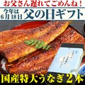 【遅れてごめんね 父の日ギフト】国産特大うなぎ 170g×2本セット【ウナギ 鰻 贈り物 プレゼント】