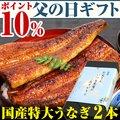 【父の日ギフト ポイント10%】国産特大うなぎ 170g×2本セット【ウナギ 鰻 贈り物 プレゼント】