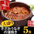国産うなぎを使用したきざみうなぎの蒲焼き大盛りタイプ100g×5食セット【送料無料】