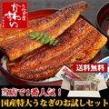 国産特大うなぎ蒲焼き お試しセット【鰻 ウナギ送料無料】