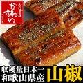 和歌山県産の山椒 1人前用使い切りタイプ×5個