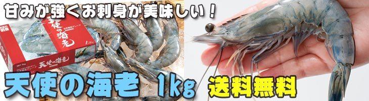 天使の海老 1kg
