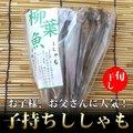 子持ちししゃも (7~9尾入) / 干物 / ひもの / シシャモ / おつまみ