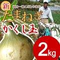 【送料無料】淡路島新たまねぎ #かくし玉 2K#