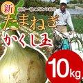 【送料無料】淡路島新たまねぎ #かくし玉 10K#