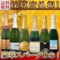 【送料無料】第88弾!ベスト・オブ・スパーク!京橋ワイン厳選!高級クレマンも入った極旨泡ばかりの辛口スパークリングワイン6本セット!