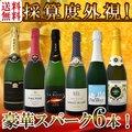 【送料無料】第91弾!ベスト・オブ・スパーク!京橋ワイン厳選!高級クレマンも入った極旨泡ばかりの辛口スパークリングワイン6本セット!