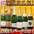 【送料無料】第93弾!ベスト・オブ・スパーク!京橋ワイン厳選!高級クレマンも入った極旨泡ばかりの辛口スパークリングワイン6本セット!