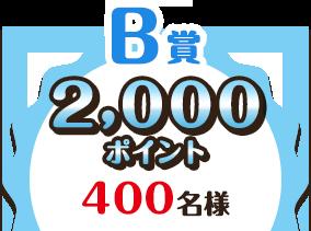 B賞 2,000ポイント