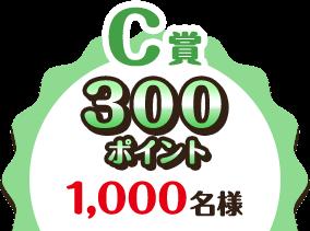 C賞 300ポイント