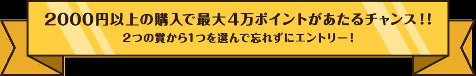 2,000円以上の購入で最大4万ポイントがあたるチャンス!!