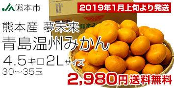 青島 2L