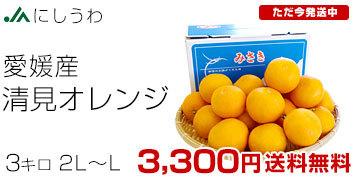 清見オレンジ優品3キロ