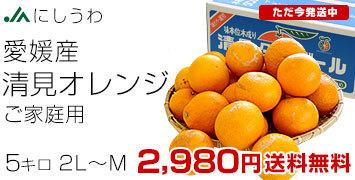 清見オレンジご家庭用5キロ