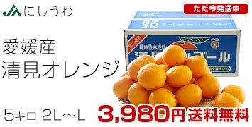 清見オレンジ優品5キロ